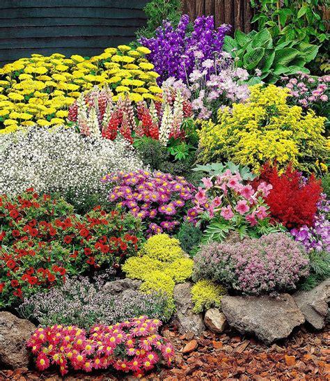 Garten Pflanzen Shop by Gro 223 Er Staudengarten 14 Pflanzen G 252 Nstig Kaufen