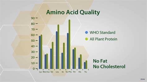 Nutrilite All Plant Protein Powder | Amway - YouTube