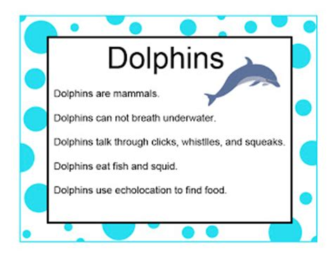 brilliant bundles dolphin crafts and activities for an 828 | dolphininfo