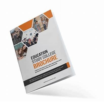 Brochure Education Educational Templates Institute