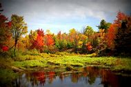 Fall Colors UpNorth