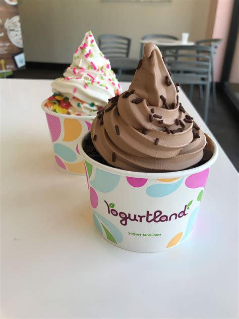 yogurtland blogs   scream  ice cream