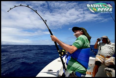 grouper fishing bottom snapper reels conventional groupers record