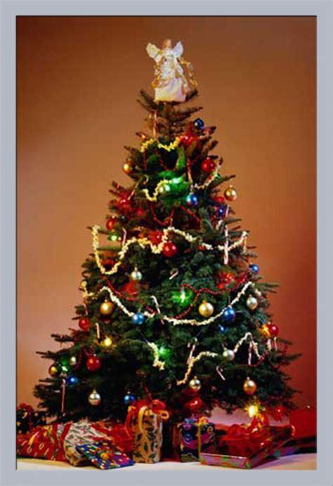 best 28 weihnachten weihnachtsbaum weihnachten