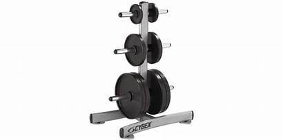 Gym Equipment Machine Fitness Clipart Clip Equipments