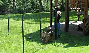 Backyard fencing for dogs peiranos fences versatile for Dog fence for sale cheap