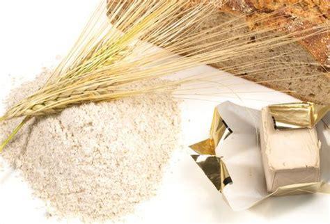 Alimenti Ricchi Di Selenio E Zinco - alimenti contengono zinco cure naturali it