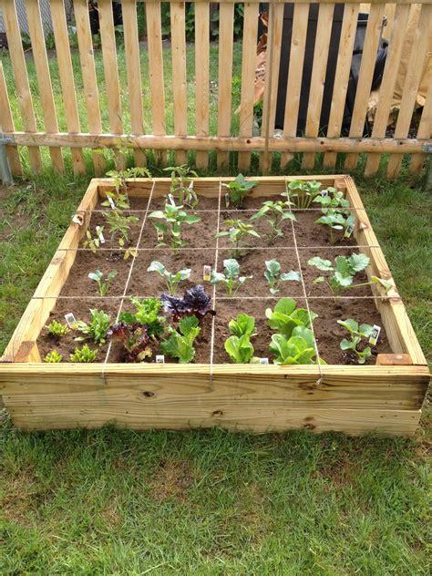 small raised bed vegetable garden small raised vegetable garden