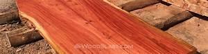 Eucalyptus Wood Slabs