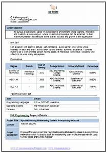 Mba Resume Format For Freshers Pdf Professional Curriculum Vitae Resume Template Sample