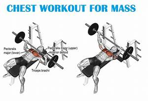 Muscle Palace  Big Chest Workout