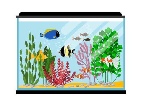 poissons de bande dessin 233 e dans l aquarium illustration de