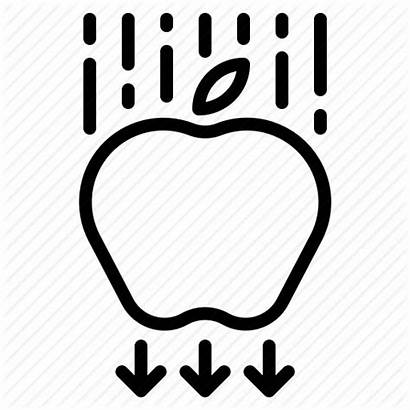 Physics Gravity Clipart Apple Force Icon Outline