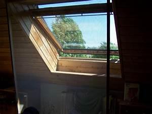 Wie Putze Ich Fenster : wie sichere ich blo unsere dachfenster cattalk das katzen forum ~ Markanthonyermac.com Haus und Dekorationen