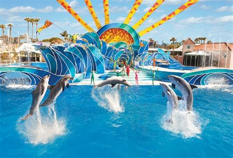 Seaworld San Diego June All You Need Know