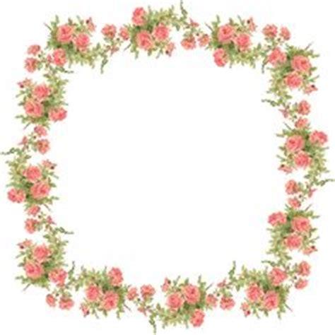 transparent floral images images floral