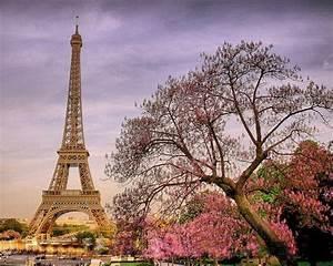 Paris, Paris, Quotes, Tumblr