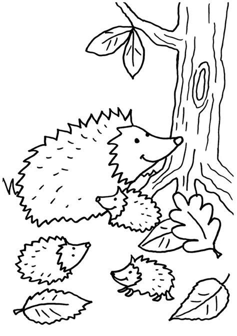 coloriage  imprimer le petit herisson en automne