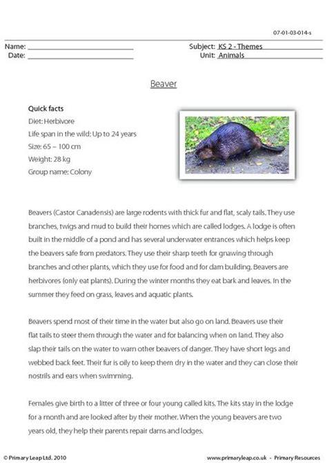 beaver comprehension primaryleap co uk