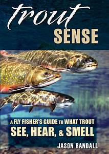 Trout Sense  A Fly Fisher U0026 39 S Guide To What Trout See  Hear