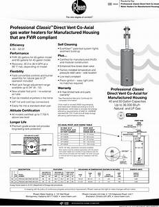 Rheem Professional Classic Series Direct Vent Co Axial For
