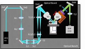 Dslm Microscope Schematic Diagram  This Diagram Shows Two
