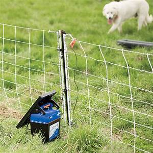 solar electric dog fence kit best fence for security 2017 With best electric dog fence