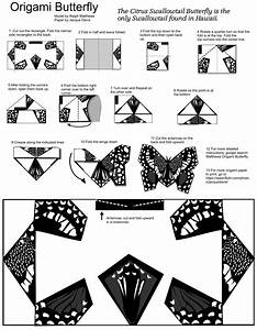 Origami Butterfly Template With Diy Instruction