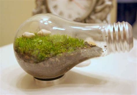 10 Amazing Homemade Terrariums That Make Perfect Holiday Gifts!