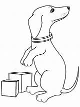Dachshund Coloring Printable sketch template