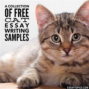 Academic Papers Sample 50 Cat Essay Topics Titles Examples In English Free