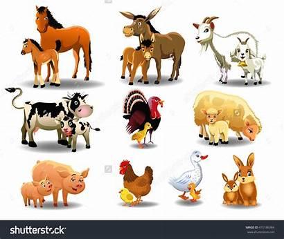 Animals Young Farm Animal Babies Clipart Vector