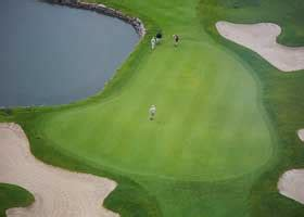 colleges  golf courses collegexpress