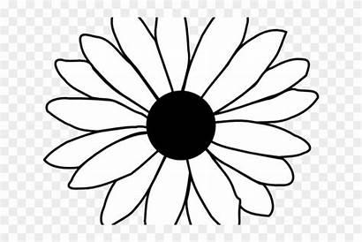 Daisy Outline Flower Coloring Single Clip Line