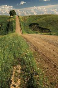 Summer Country Dirt Roads