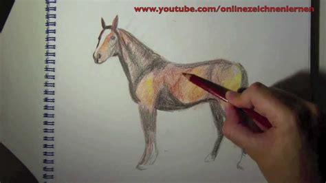 wie zeichnet man ein pferd farbe  zeichnen
