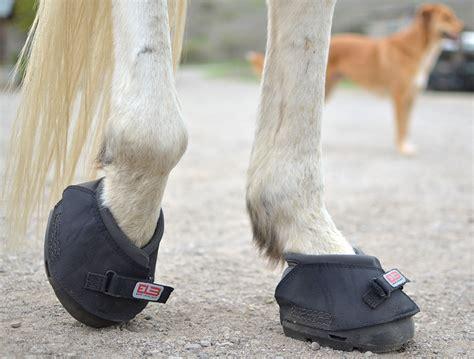 Best Hoof Boots Cavallo Boots The Best Hoof Boot When It Clicks