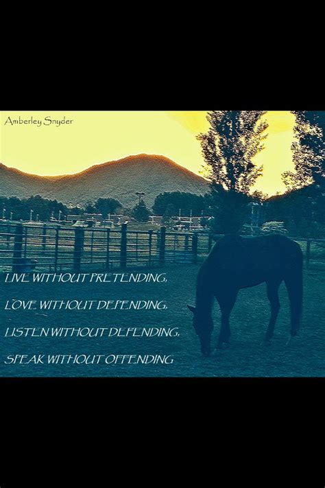 amberley snyder quote  inspires  pinterest quotes