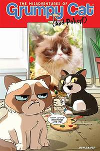 The Misadventures of Grumpy Cat (and Pokey) ~ What'cha ...