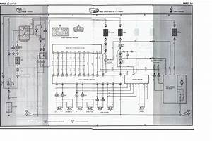 1989 Toyota Mr2 Wiring Diagram Manual Original Socialnetworkdiagram Enotecaombrerosse It