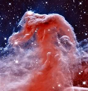 Horsehead Nebula Photograph by Benjamin Yeager