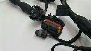 Engine Wiring Harness Fits 2013 Kia Optima Hybrid R294492