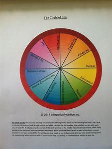The Circle Of Life Exercise From Iin