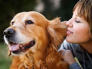 Dogs and cats are woman's best friend: Find out why!