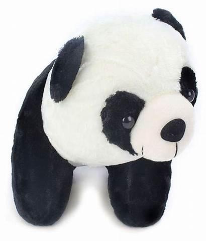 Panda Bear Teddy Toy