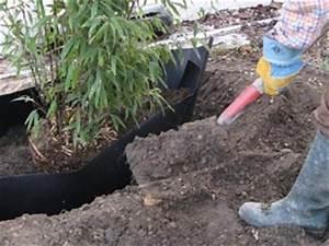 Barrière Anti Rhizome Castorama : barri re anti rhizome stopper les bambous envahissants ~ Dailycaller-alerts.com Idées de Décoration