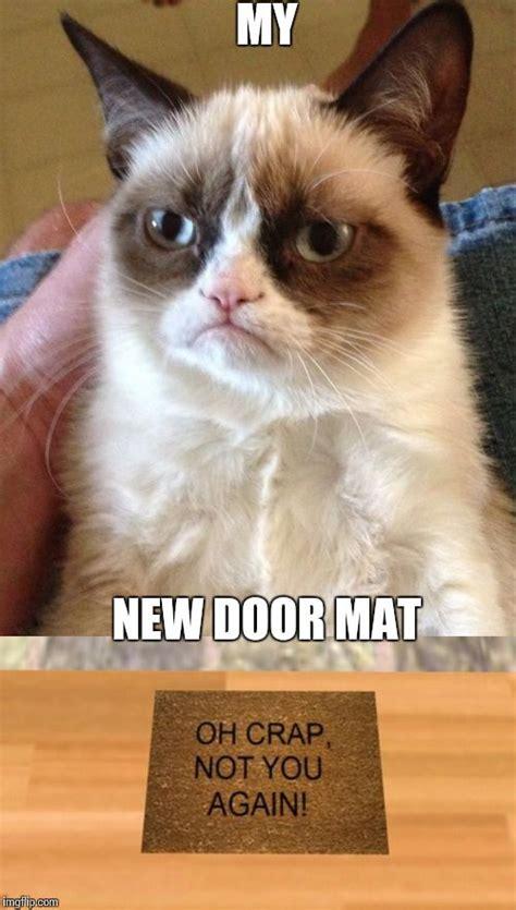 671 Besten Cats Bilder Auf Pinterest  Buchumschlag, Katze