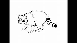 How To Draw A Raccoon U041au0430u043a U043du0430u0440u0438u0441u043eu0432u0430u0442u044c U0435u043du043eu0442u0430 Youtube