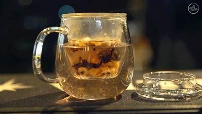 Tea Drink Boost Cravings Pop Lane Kopifolks