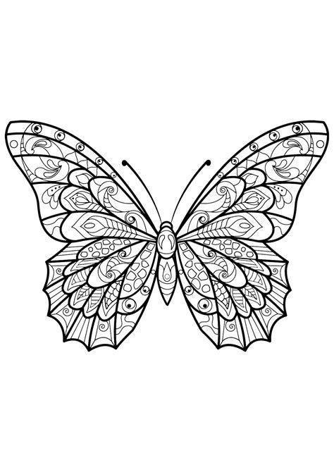 Papillon jolis motifs 3 - Papillons & insectes
